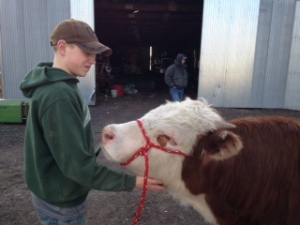He is a cattleman at heart.