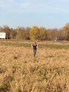 Wyatt in Pasture